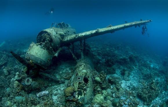 Seaplane Wreck