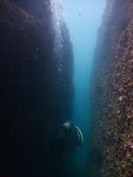 Diver in the Split