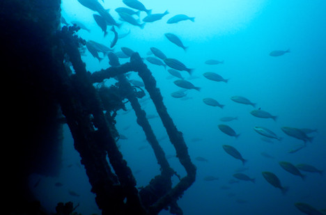 Badouzi Shipwreck Stairs