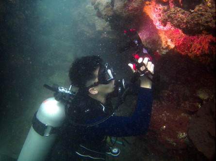 Diver taking a photo