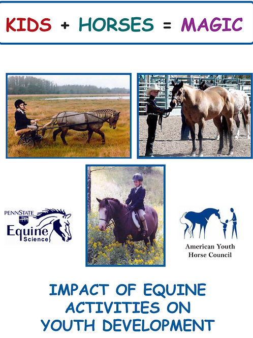 Impact of Equine Activities on Youth Development