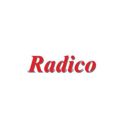radico-coloration-logo