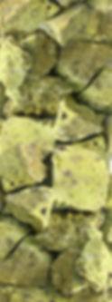 Le polpe, olive denocciolate, Eva, Olio Fresco