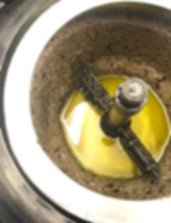 Eva, spremitura, olio fresco, olio appena spremuto
