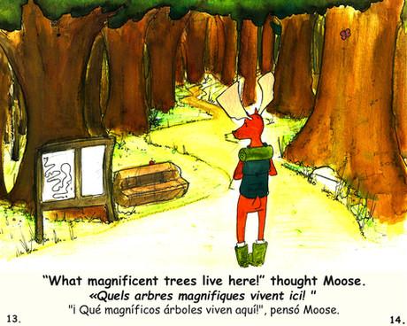 Moose Book 13&14.jpg