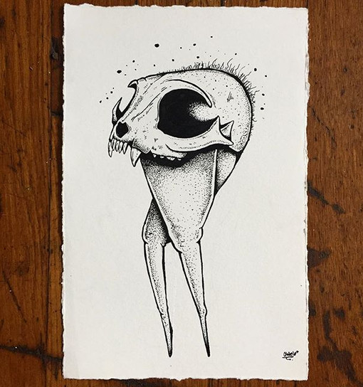 Bird chow_6