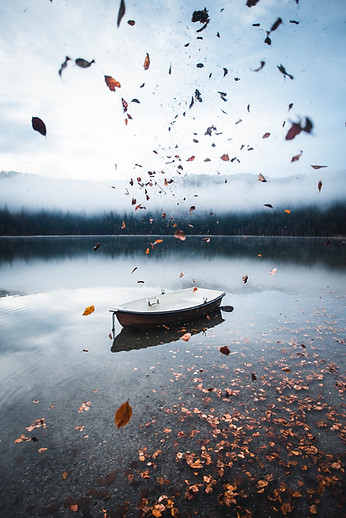 Scenic scenery of some falling leaves with a boat on background. Moody and foggy morning by the Sfanta Ana Lake, Romania