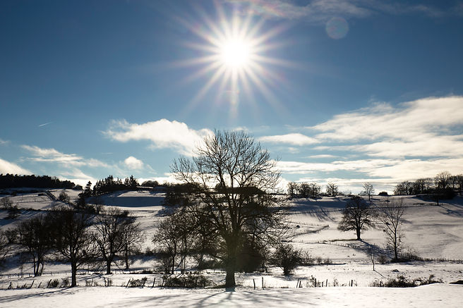 auvergne neige arbre soleil