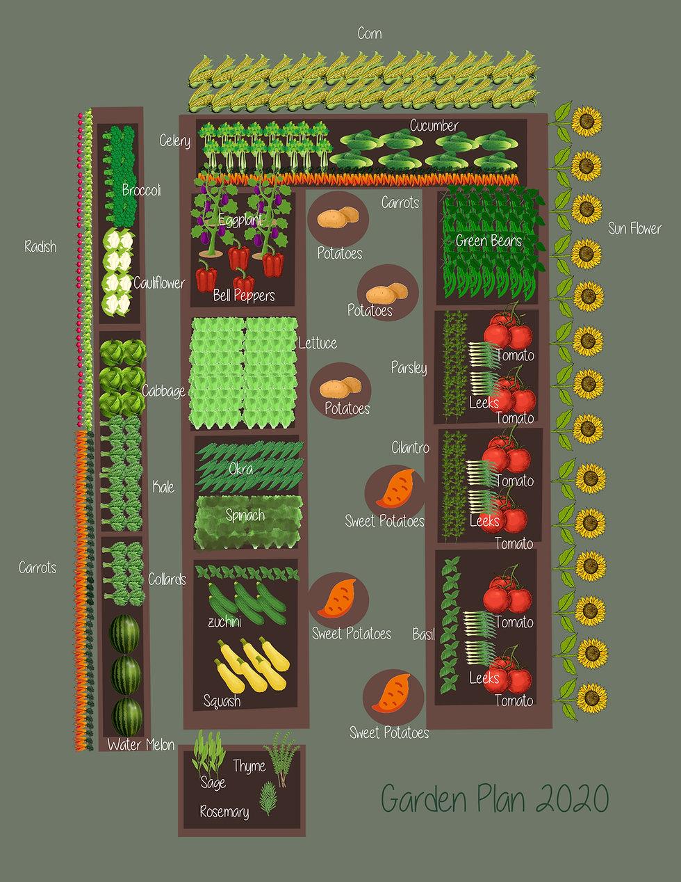 Garden Plan 2020.jpg