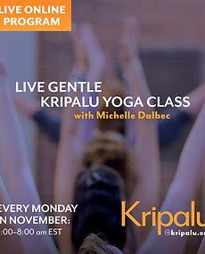 Gentle Kripalu Yoga_Michelle Dalbec_.jpg
