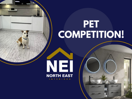 Pet competition: win a stylish LED mirror!