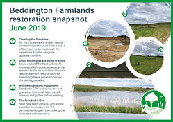 Beddington Farmlands.jpg