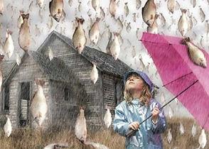 raining_fish_.jpg