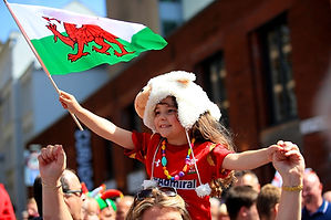 rugby_fans_in_cardiff_G.jpg