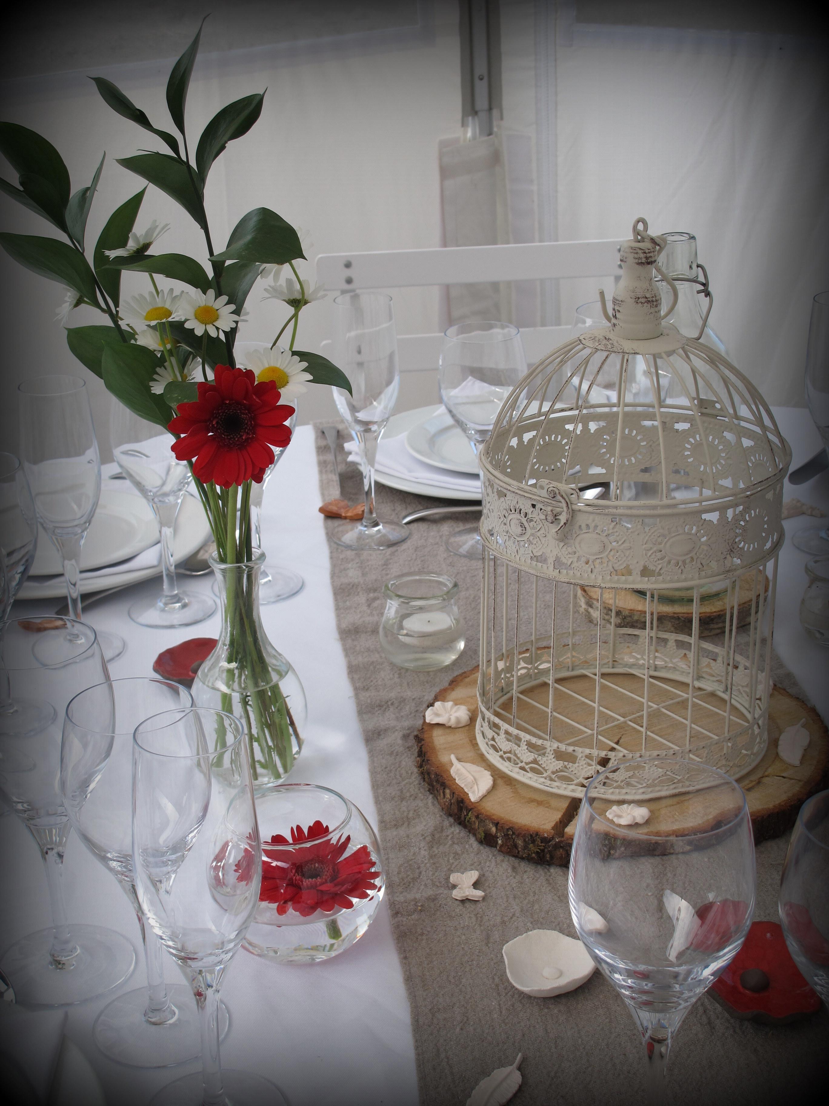 Cage à oiseaux sur rondin de bois