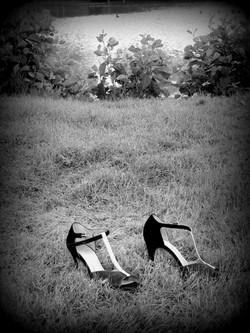 mariage dans un pré