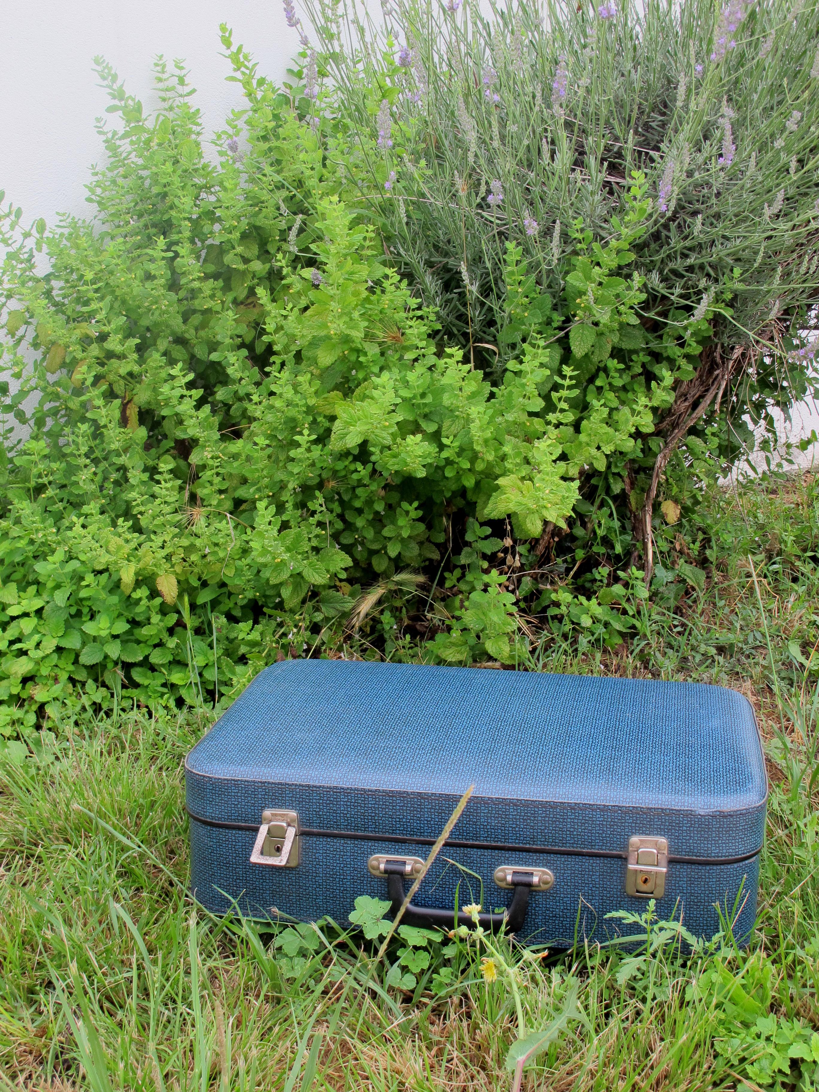 valise bleue