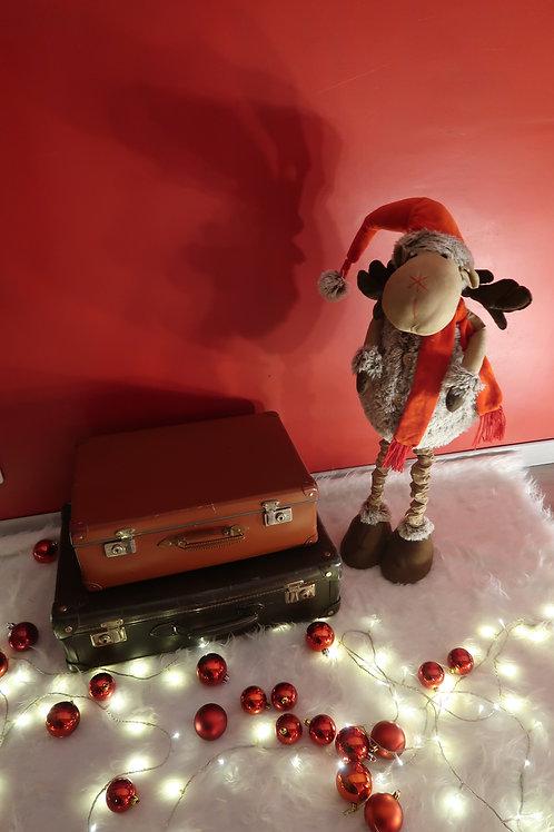 """Pack """"Pour Noël, on part en voyage"""""""