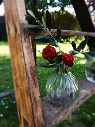 fleurs 003.JPG