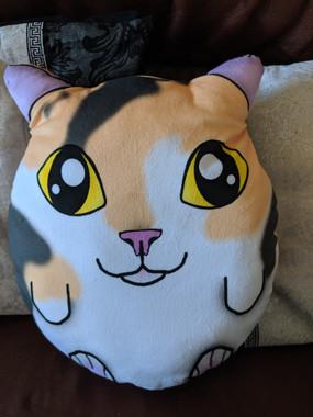 Gizmo the Calico cat