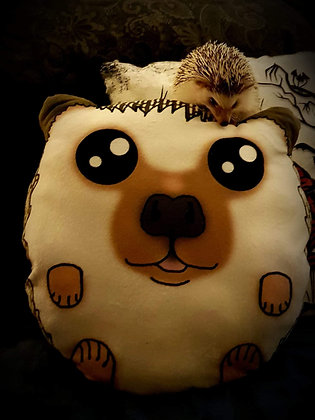 Custom pygmy hedgehog plush pillows