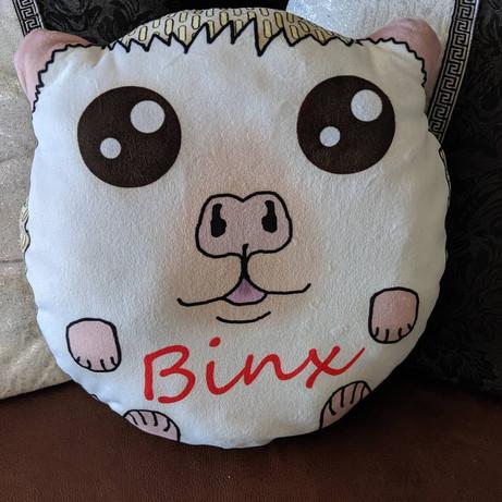 Custom made Hedgehog plush pillow