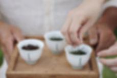 たつみ茶園