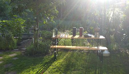sfeer gras tafel en zon.jpg