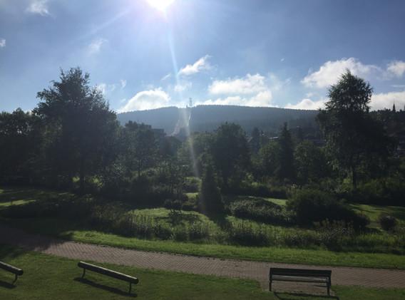 Kurpark mit Blick auf den Bocksberg