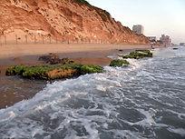 חוף תל אביב צפון.jpg
