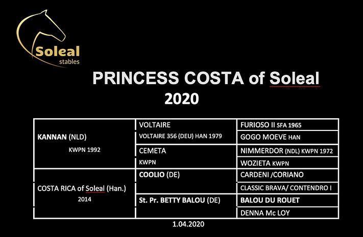 Princess Costa.png