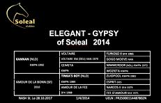Gypsy OS 2014.png