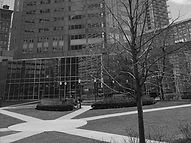 pic_office_chicago_bw_311.jpg