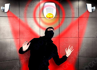 thief-with-balaclava-spotted-trying-3142