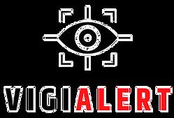 VIGIALERT LOGO 404X274_edited.png