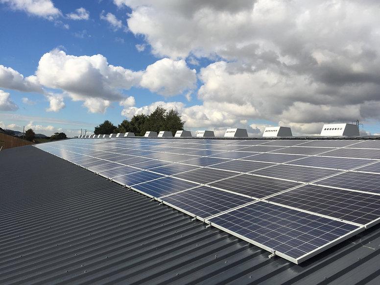 Shaws 50kWp Solar panels.jpg
