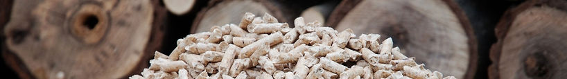 Biomass Financing Cheshire