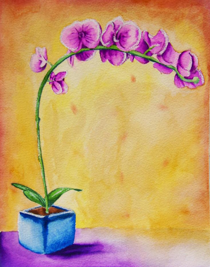 Purple-Shadow-Watercolor.jpg