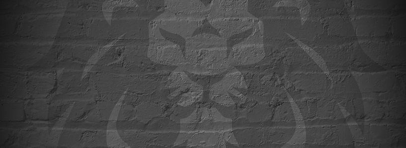 Lion3-01_edited_edited.jpg