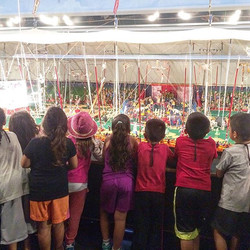 K-12 Tours at the Ringling