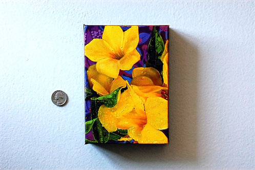 Buttercup Flower