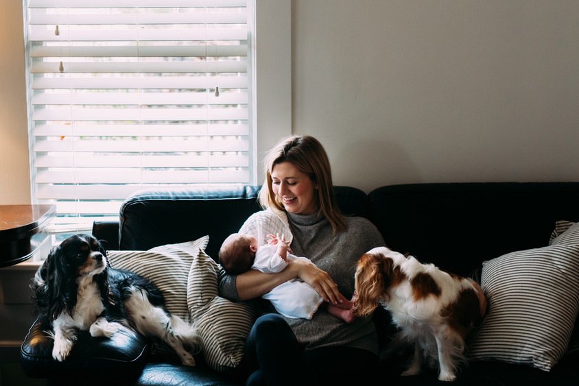 Mother with her baby and dogs