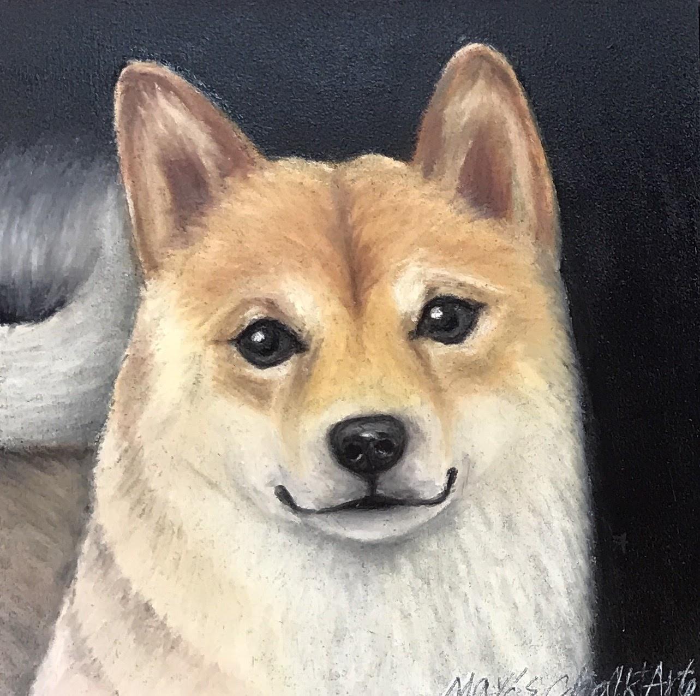 柴犬似顔絵