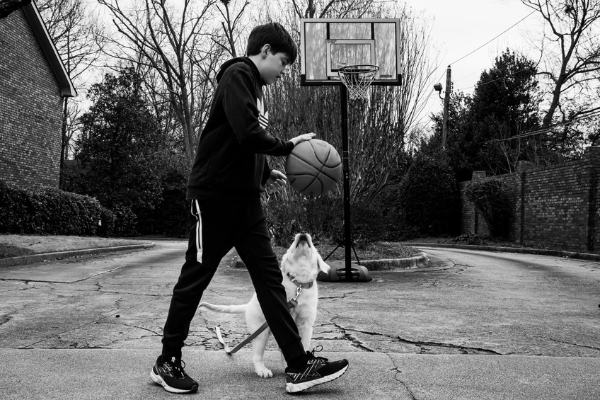 A boy, his dog and a ball