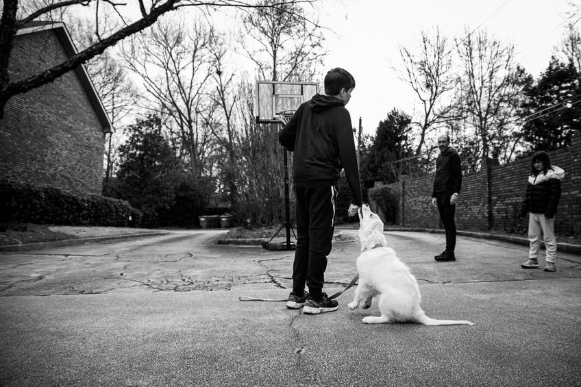 Boy and dog playing