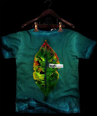 01 costa T-shirt Folha Natureza