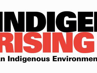 2015 - Contemporary Indigenous Activism: Indigenous Rising & NoDAPL