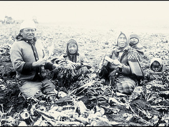 1889 - Peasant Farming policy implemented: Indians had to experience subsistence farming before they