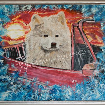Samoyed is going home 16inx20in.jpg