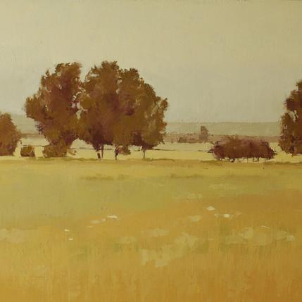 Meadow Grove.jpg